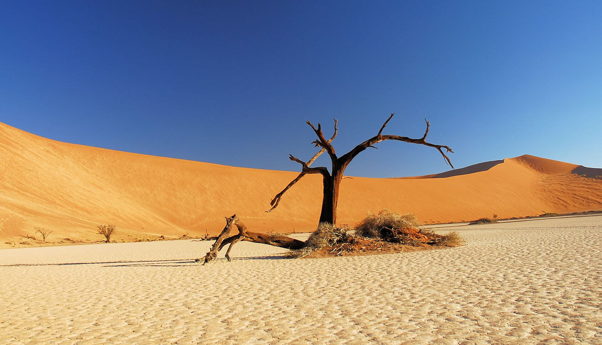 fp_slideshow_namibia